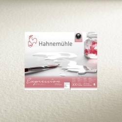 hahnemuehle-expression